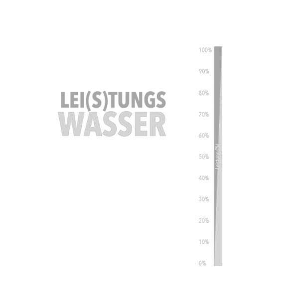 soulbottles 0,6L Lei(s)tungswasser